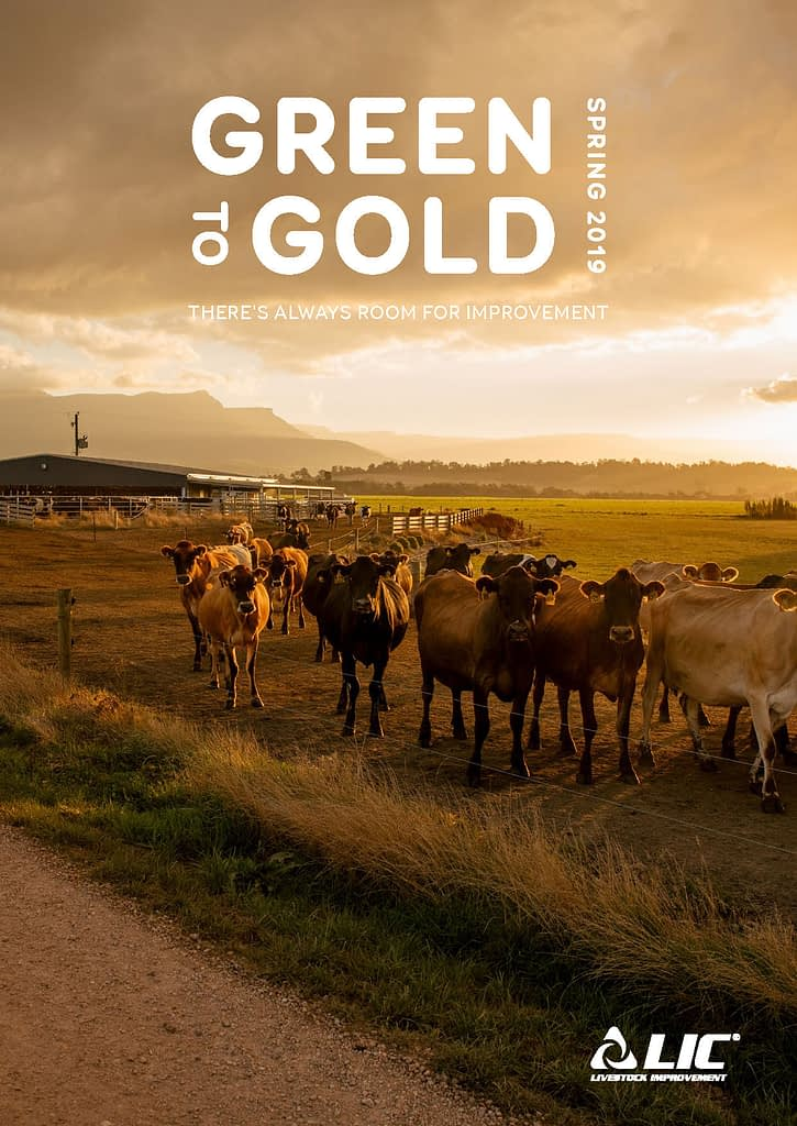 LIC Australia Green to Gold - Spring 2019 Cover