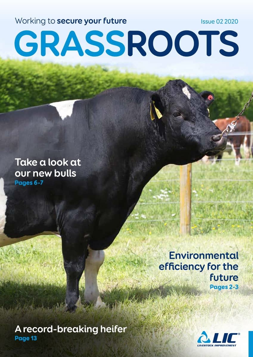 LIC Ireland Grass Roots Issue-02 Autumn 2020 Cover