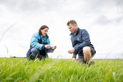 Good grazing management is a vital skill